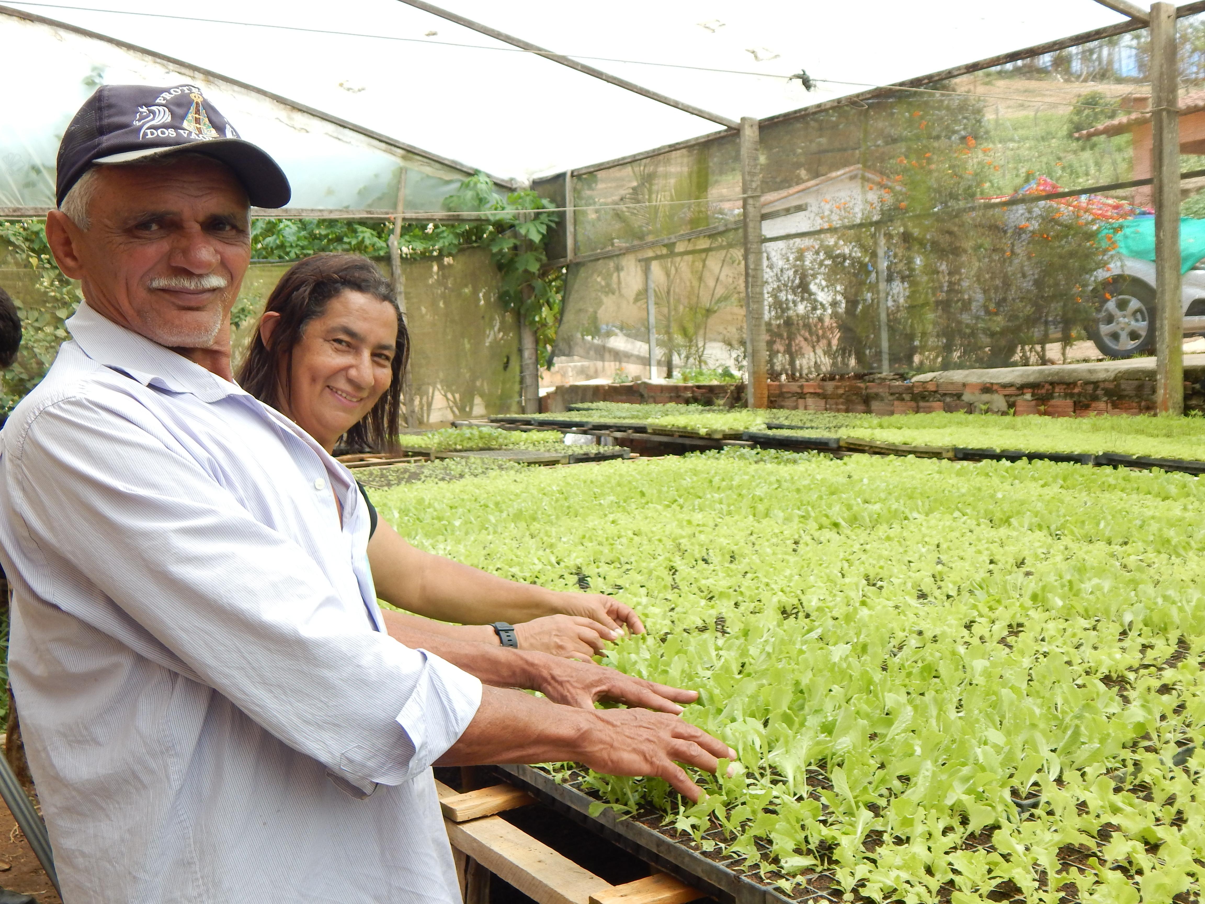 Comunidade em Aratuba incrementa produção com apoio do Mais Alimentos