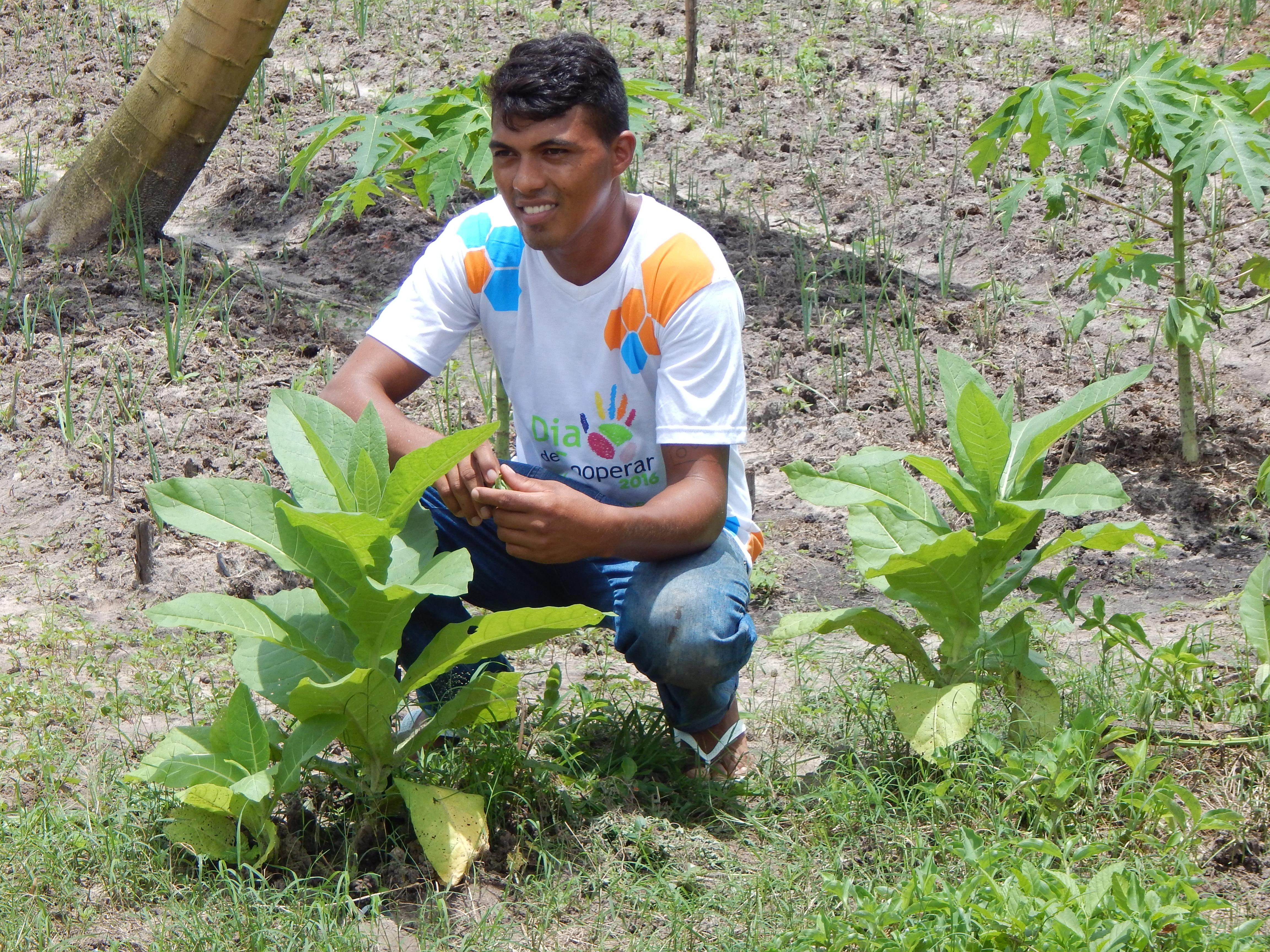 Ocara: produtores diversificam produção com piscicultura e horticultura