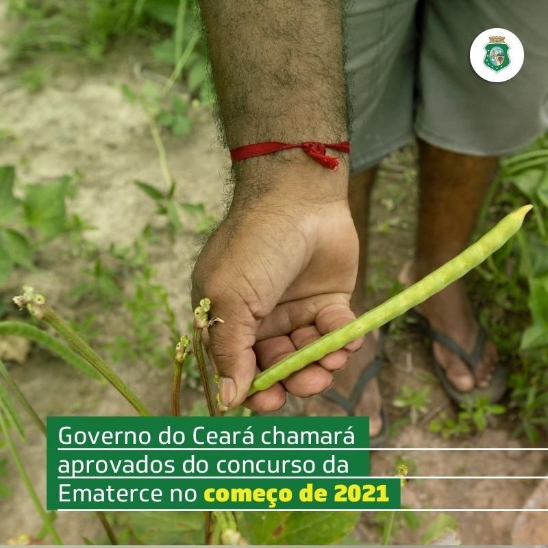 Ematerce: Governo do Ceará convocará concursados no início de 2021