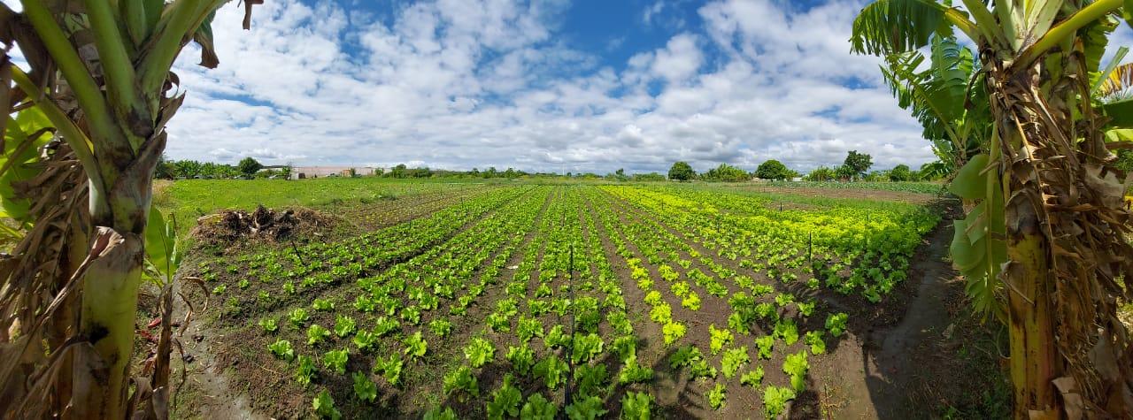 Ematerce e MBS vão a campo e escutam os agricultores na região do Cariri