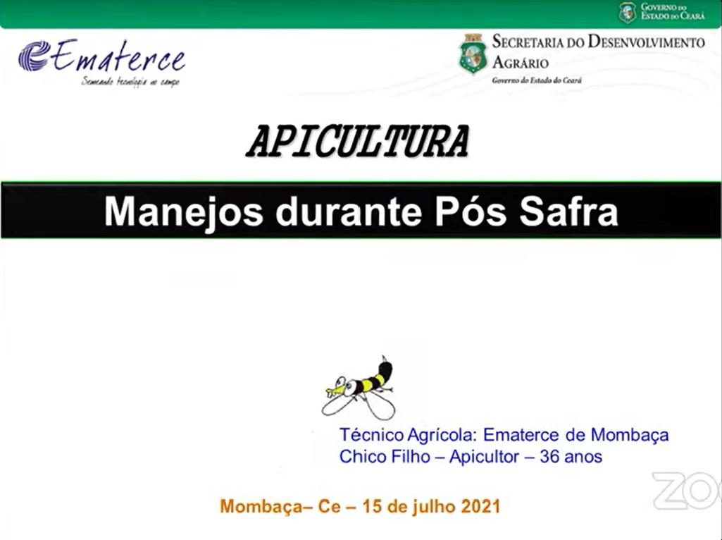 Ematerce realiza seminário online sobre como manter as abelhas durante o pós safra